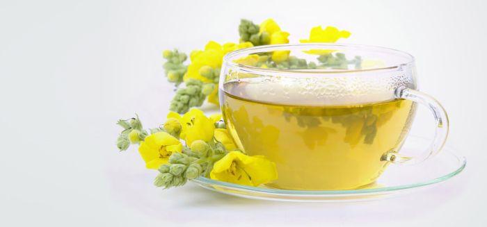 Remedii naturiste pentru tuse - ceai de lumanarica