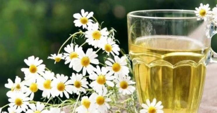 remedii naturiste pentru durerile in gat - ceai de musetel